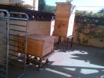 Shinnyo Bees (L) | LA River Bees (R)