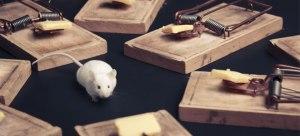 Mice_traps