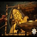 Shinnyo Nirvana Image
